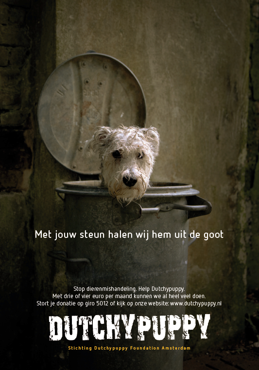 Stichting Dutchypuppy